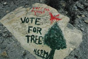 vote-for-tree