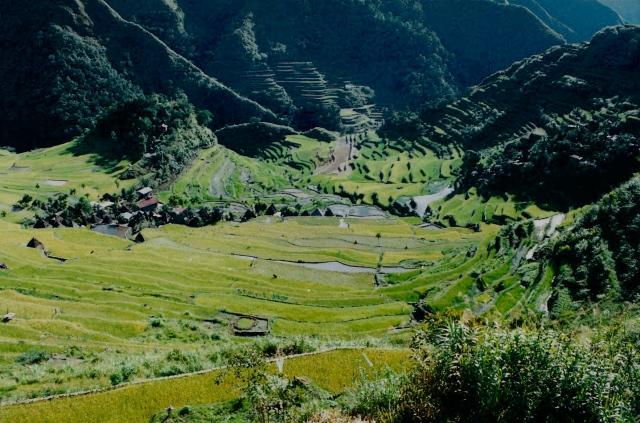 Batad View