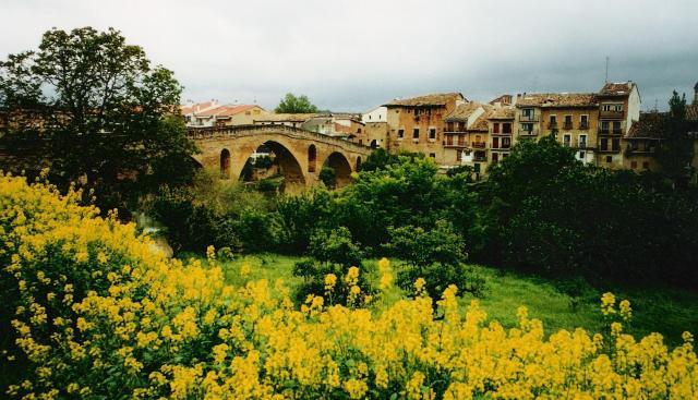La Puente Riena