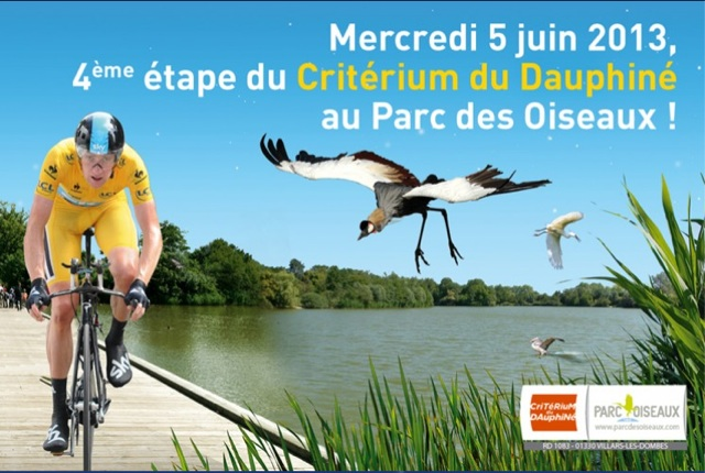 04-bird-park-race-poster